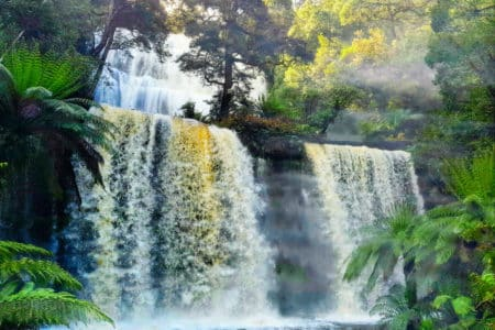 Russell Falls Tasmania in flood