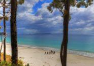 Tas Coast line