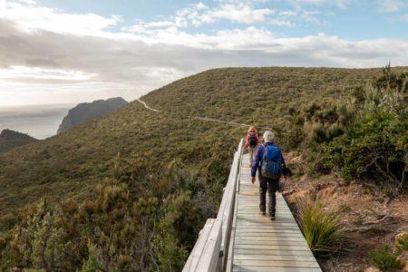 Cape-Pillar-track